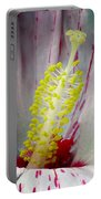 Peppermint Flame 03a Portable Battery Charger