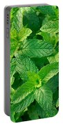 Peppermint Portable Battery Charger