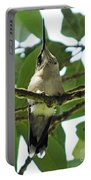 Perched Hummingbird Portable Battery Charger