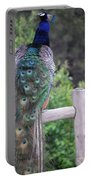 Perched Peacock Portable Battery Charger