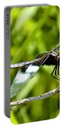 Perched Widow Skimmer Portable Battery Charger