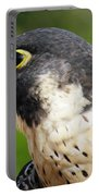 Peregrine Falcon Portable Battery Charger