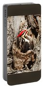 Perfect Pileated Pose Portable Battery Charger