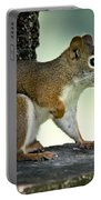 Perky Squirrel Portable Battery Charger