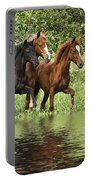 Peruvian Paso Reflections Portable Battery Charger