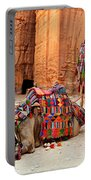 Petra Camels Portable Battery Charger