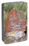 Petrified Stump Portable Battery Charger