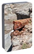 Petrified Tree Trunk Portable Battery Charger