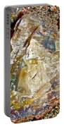 Petrified Wood In Crystal Forest In  Petrified Forest National Park-arizona Portable Battery Charger