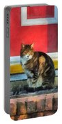 Pets - Tabby Cat By Red Door Portable Battery Charger