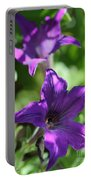 Petunia Hybrid From The Sparklers Mix Portable Battery Charger