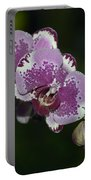Phalaenopsis 3916 Portable Battery Charger