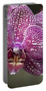 Phalaenopsis Helen Alice Mary 2220 Portable Battery Charger