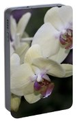 Phalaenopsis Ming Chao Dancer   8585 Portable Battery Charger