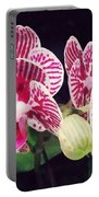Phalaenopsis Orchid Taida Little Zebra  Portable Battery Charger