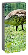 Philly Goose In The Grass Portable Battery Charger