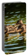 Photography Painting Of Mother And Her Ducklings Portable Battery Charger