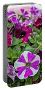 Pick Purple Portable Battery Charger