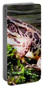 Pickerel Frog Portable Battery Charger