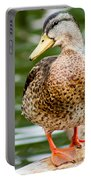 Picture Perfect - Mallard Duck Portable Battery Charger