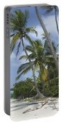 Picture Perfect Paradise Portable Battery Charger