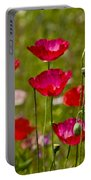 Picture Perfect Poppies Portable Battery Charger