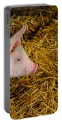 Pig Standing In Hay Portable Battery Charger