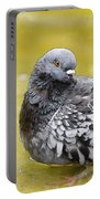Pigeon Bath Portable Battery Charger