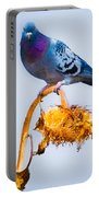 Pigeon On Sunflower Portable Battery Charger