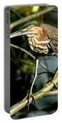 Pigeon Toed Heron Portable Battery Charger
