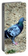 Pigeon Toed Portable Battery Charger