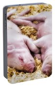 Piglets Portable Battery Charger