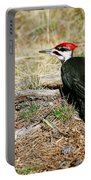 Pileated Woodpecker Forest Floor Portable Battery Charger