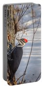 Pileated Woodpecker Winter Portable Battery Charger