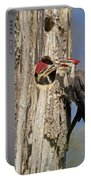 Pileated Woodpecker And Chick Portable Battery Charger