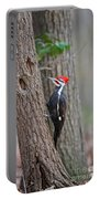Pileated Woodpecker Foraging Portable Battery Charger