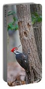 Pileated Woodpecker On Tree Portable Battery Charger