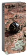 Pill Millipede Portable Battery Charger