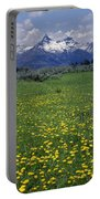 1a9210-pilot Peak And Wildflowers Portable Battery Charger