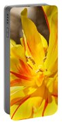 Pin Striped Tulip Portable Battery Charger