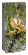 Pine Catkins Portable Battery Charger