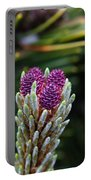 Pine Cone Buds Portable Battery Charger
