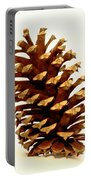 Pine Cone On White Portable Battery Charger