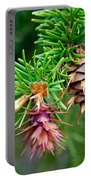 Pine Cone Stages Portable Battery Charger