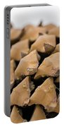 Pine Cone Study 4 Portable Battery Charger