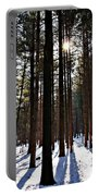 Pine Grove Vii Portable Battery Charger