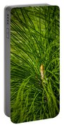 Pine Needles Portable Battery Charger