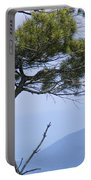 Pine Tree Along The Blue Ridge Parkway Portable Battery Charger