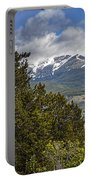 Pine Trees In The Rocky Mountain National Park Portable Battery Charger