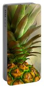 Pineapple II Portable Battery Charger